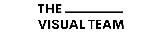 The Visual Team logo - JIN Design Portfolio thumbnail